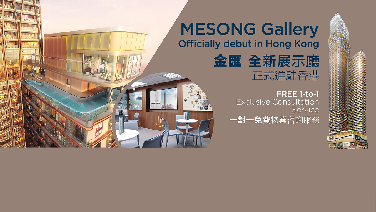 MESONG Website Banner4_E.png