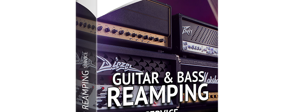 REAMPING Service | Get Professional Sound from your Guitars and Bass