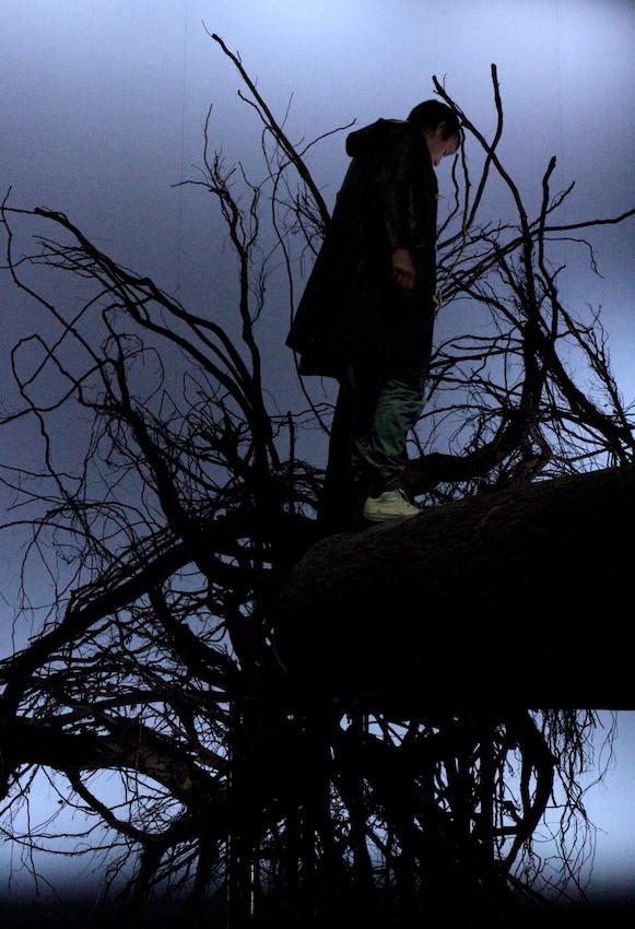Namnet treet.JPG