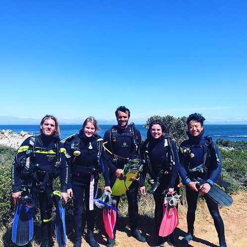 PADI Open Water Course - Manuel