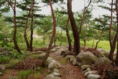 South Korea hiking path