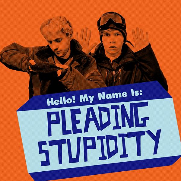 pleading stupidity 1000x1000 V4.png