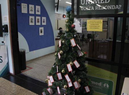 Voluntários da AAP-VR criam projeto Árvore de Natal Solidária