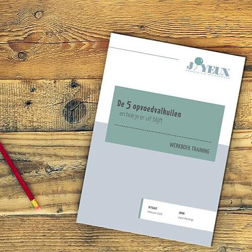 Werkboek 5 opvoedvalkuilen