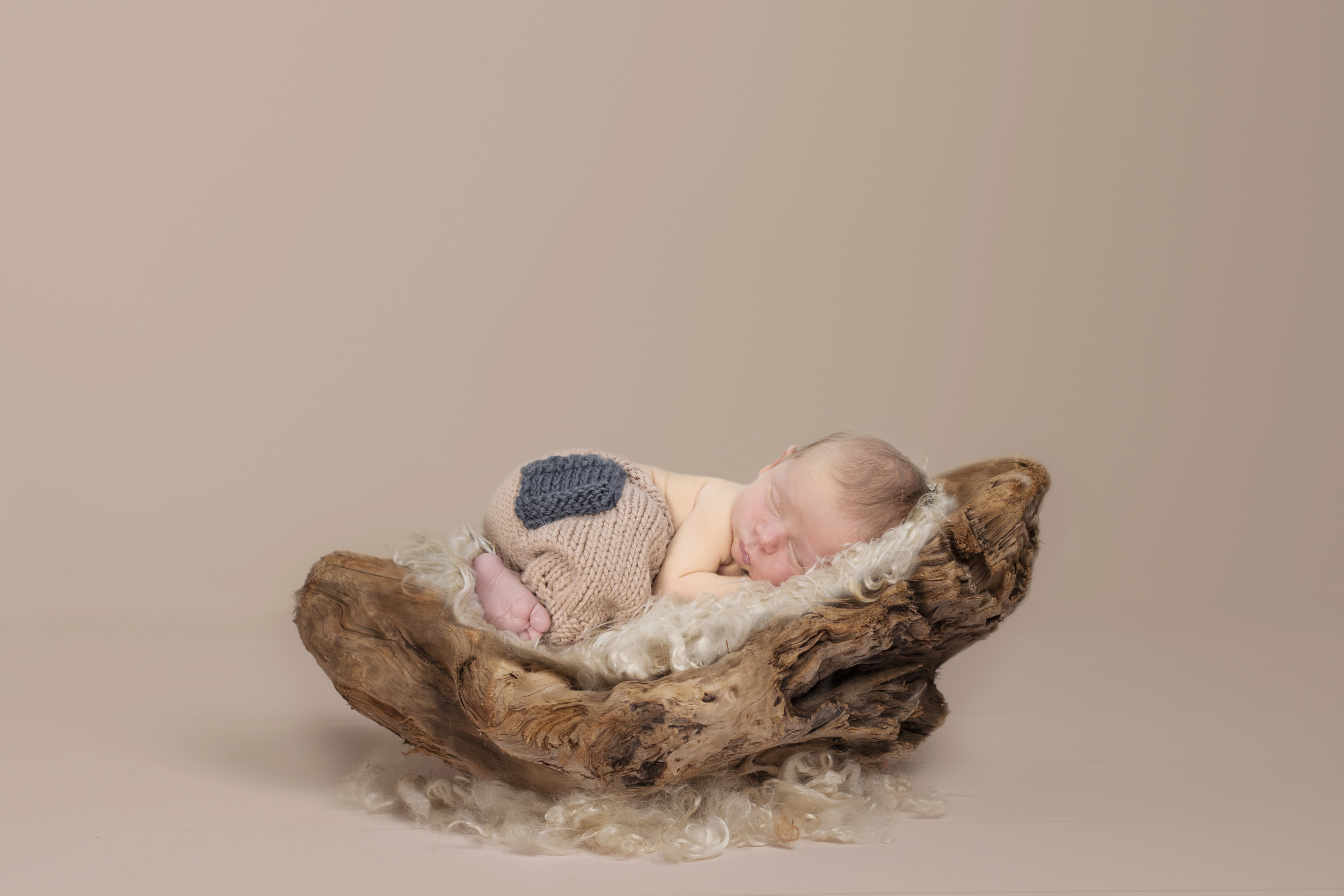 driftwood-on-cream-newborn-prop-download 2