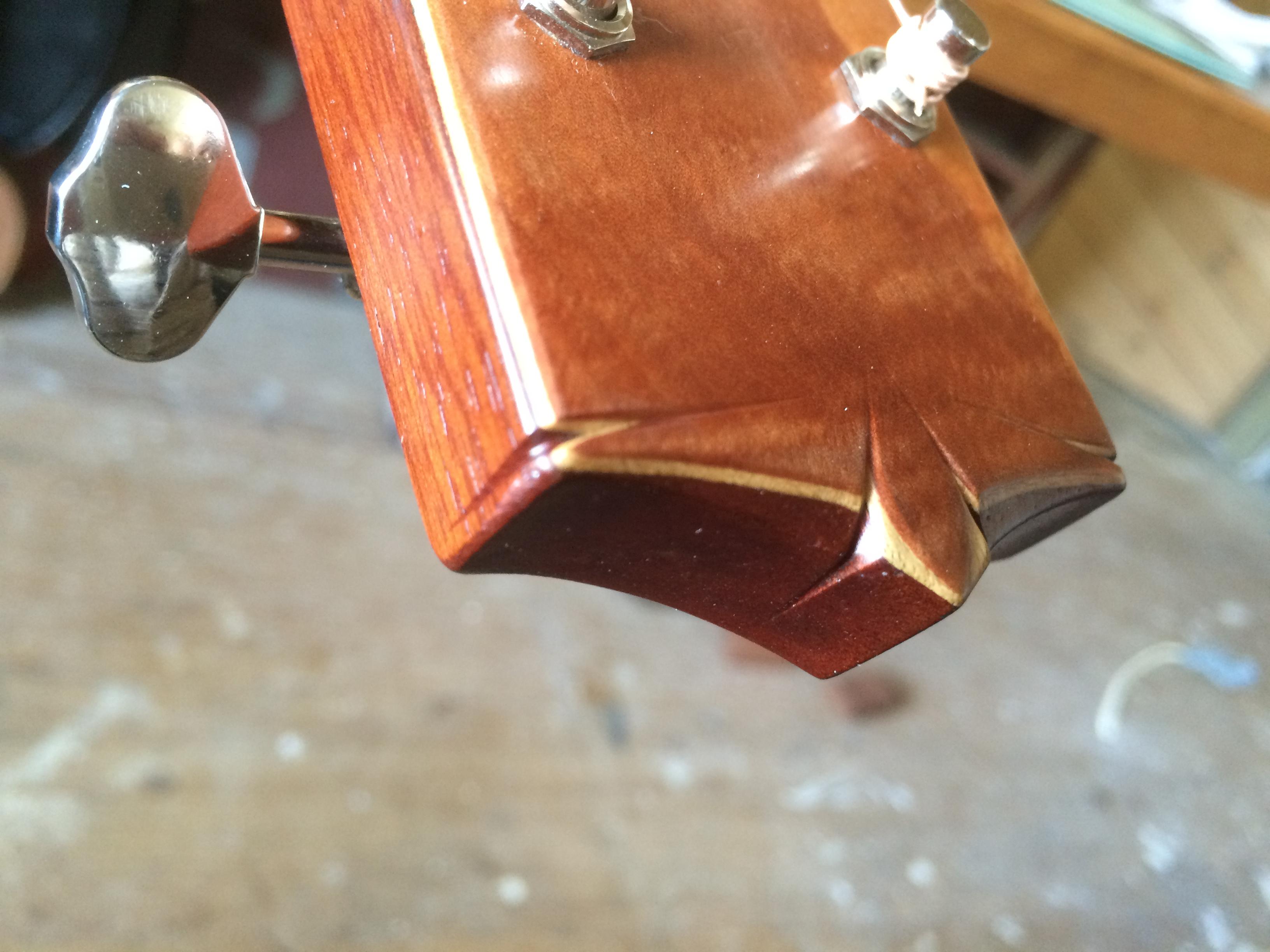 Alva Rose Guitar