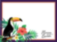 Tropic Toucan.jpg
