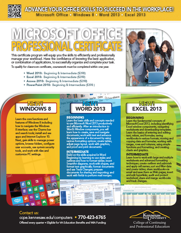 MS Office combo flyer
