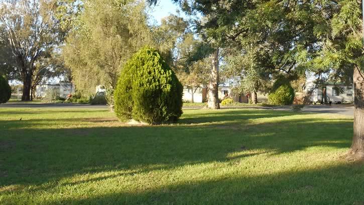 Grassy Area 2
