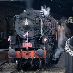 Train in Pickering Station