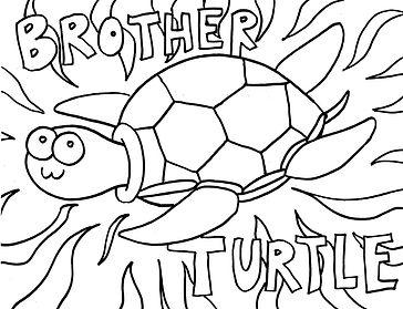 17_BrotherTurtle.jpg