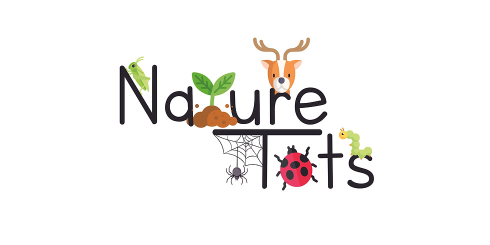 Nature Tots: Oh, Deer!
