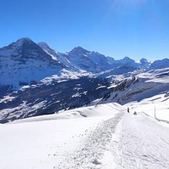 Toboggan run Grindelwald