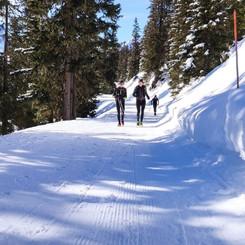Grindelwald winter trail running