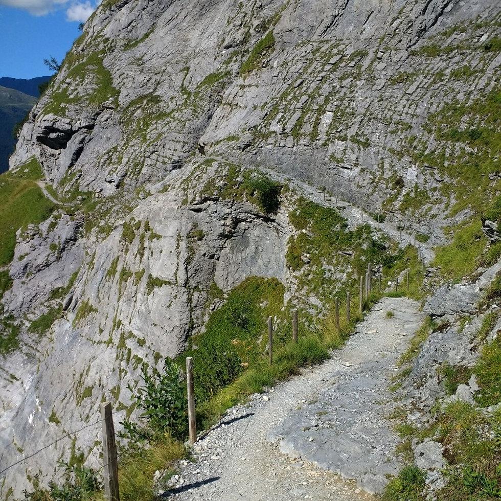 Bäregg Trail