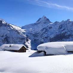 Winter trail to Faulhorn