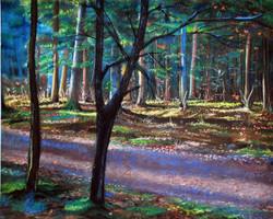 """""""Краски леса"""", бум. пастель, 2012 г."""