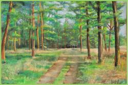 """""""Дорога через лес"""", 2012 г."""