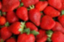 Organic berries.jpg
