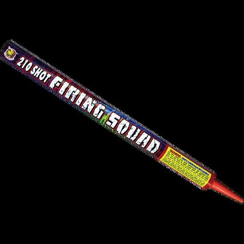 Firing Squad - 210 Shots