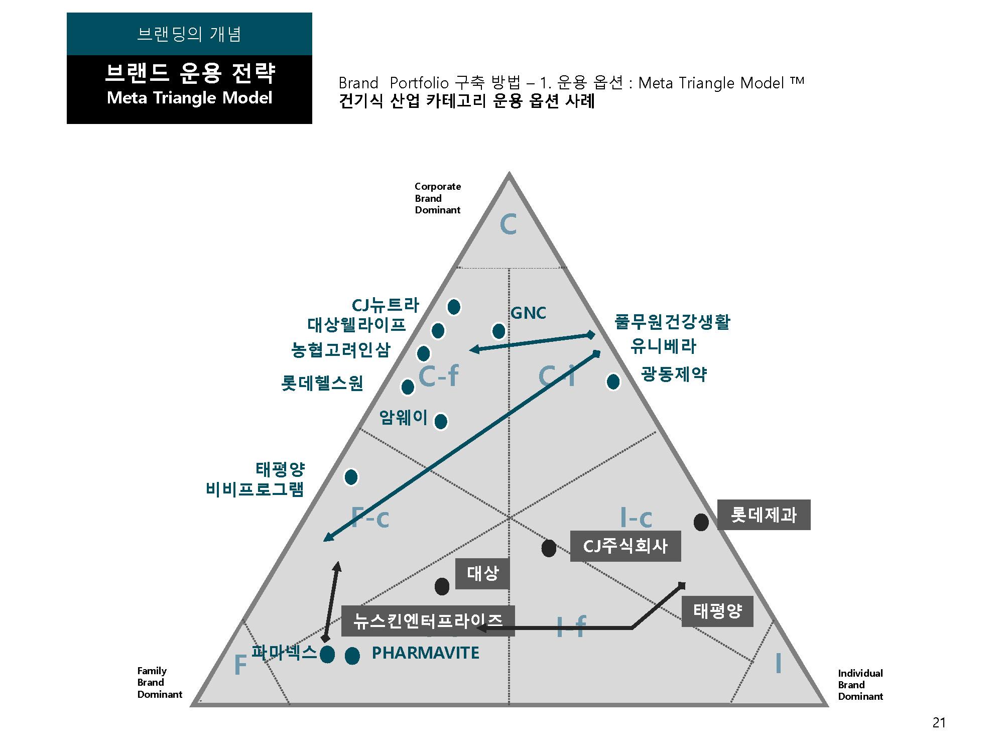 Meta Triangle Model 건강식품