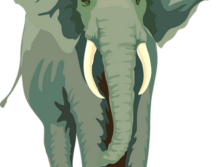 Tough Conversations- Get that Elephant out of the Room!