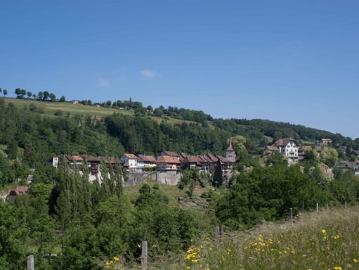 Base d'images, Commune de Moudon