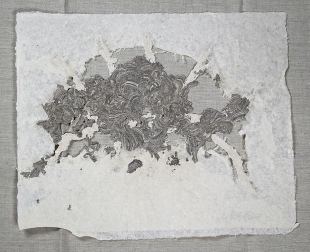 Wasps Nest in Linen
