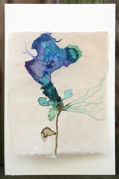 Imaginary Florette 24