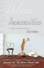 Delicate Immensities Exhibition Poster