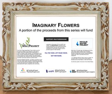 Imaginary Flowers Funding Signage