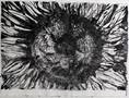 DoriMiller_Fibonacci-Sunflower_Black-and-Silver_SilkScreen_sm.jpg