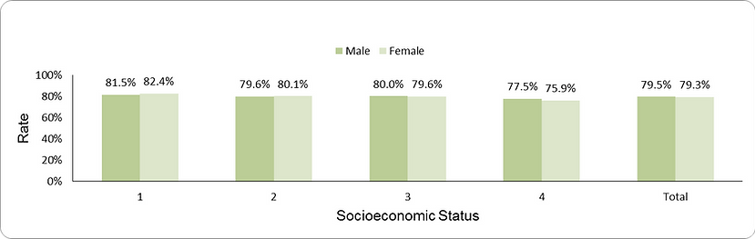 Documentation of BMI components by socio-economic position (1-lowest, 4-highest) and sex