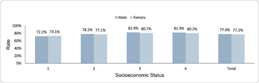 Documentation of BMI components in adolescents by socio-economic position (1-lowest, 4-highest) and sex