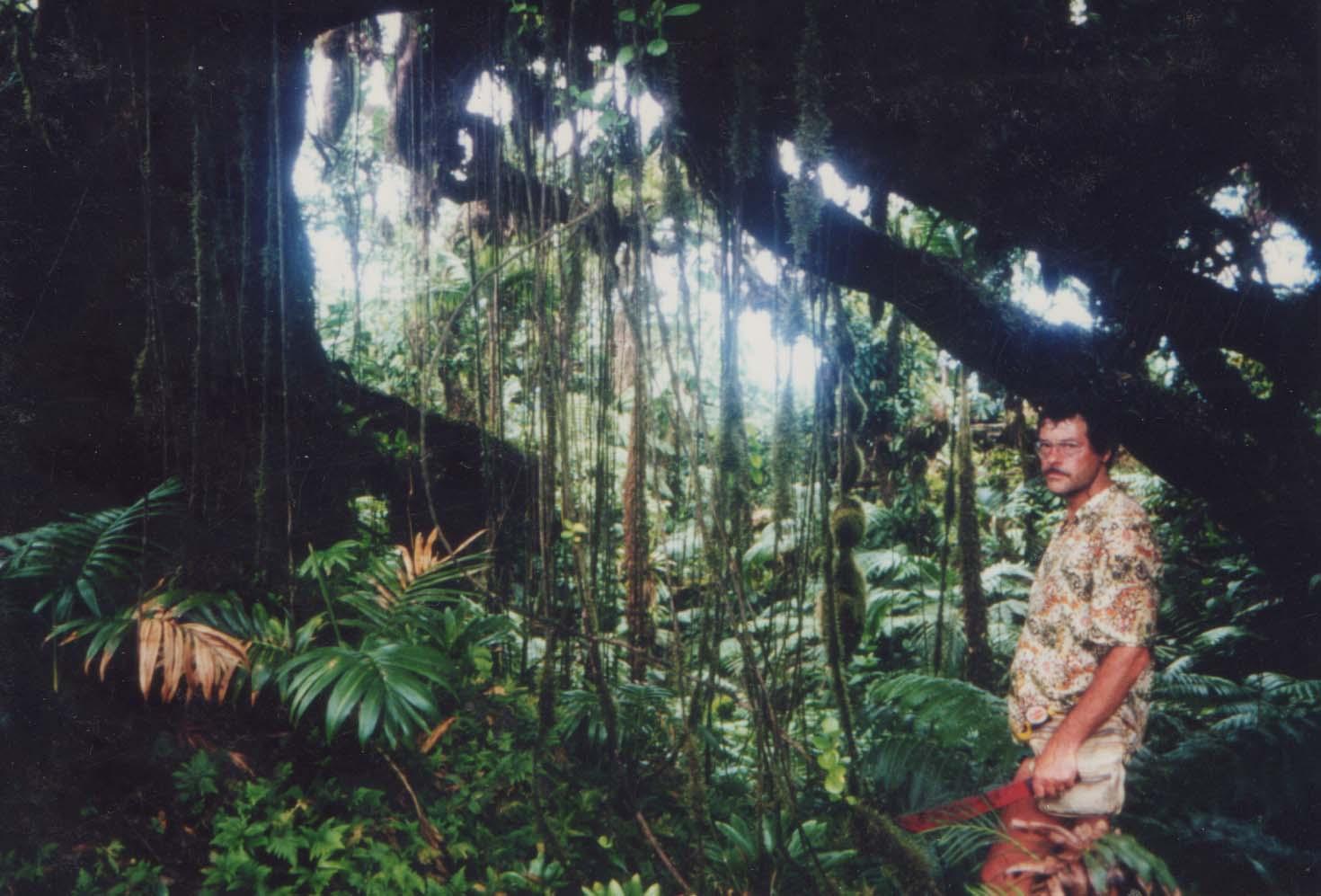 #Elphin Forest Saba 1991