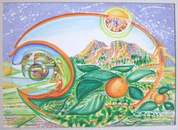 1973 naranjas 38x54