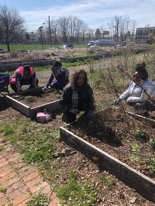 Recap: Earth Day at Hawthorne Avenue Farm