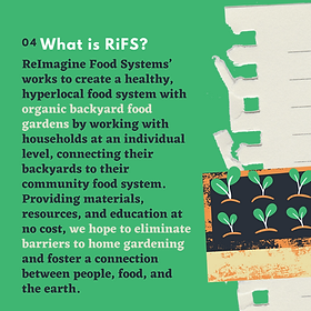 What is RiFS? Description of ReImagine Food Systems Backyard Gardening Program