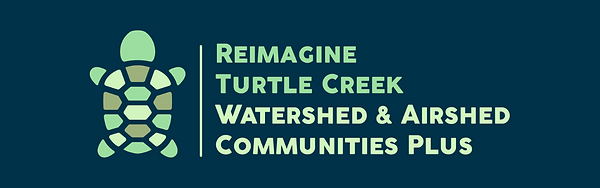 Copy of TCWAC Turtle.png
