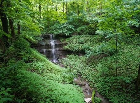 Trails to Explore Around Westmoreland County