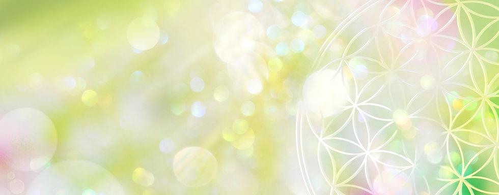 Flower of Life Color.jpg