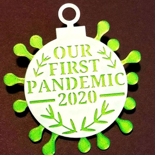 Our First Pandemic Ornament 3