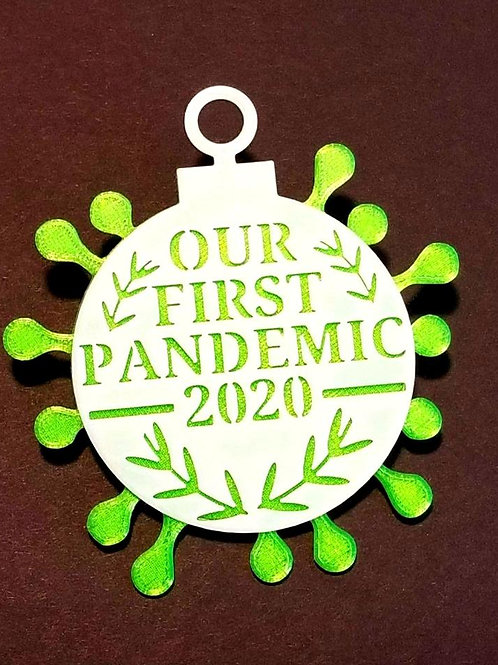 Our 1st Pandemic