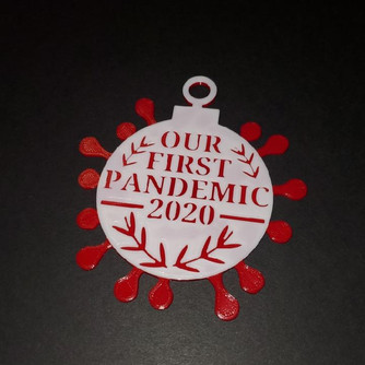 Our First Pandemic Ornament 4