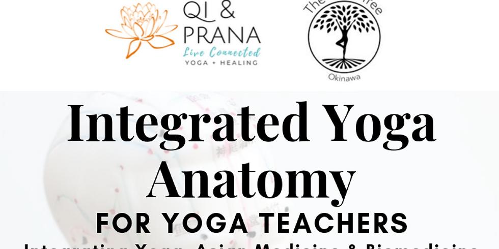 Integrated Yoga Anatomy for Yoga Teachers
