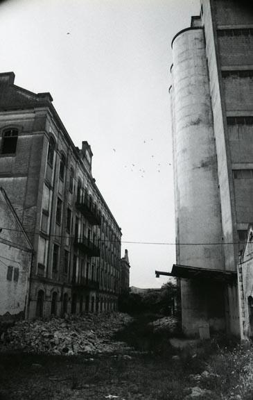 BejaCeleiro029.jpg