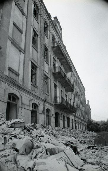 BejaCeleiro028.jpg