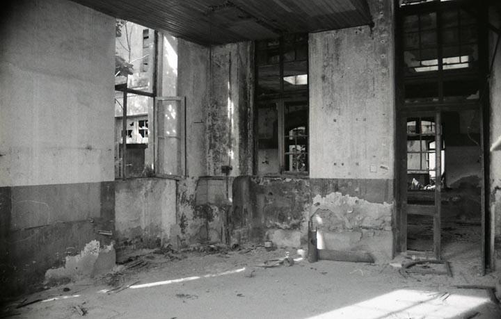 BejaCeleiro018.jpg