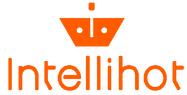Intellihot Full Logo Orange.png