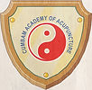 academy-new-logo-web_edited.jpg